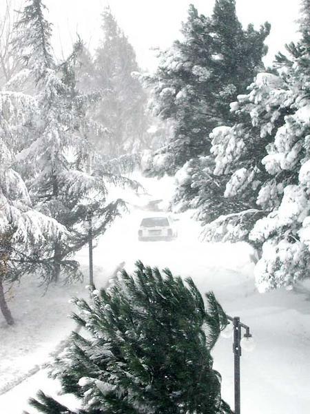 Istanbul_snow/1_campus_in_snow_130204
