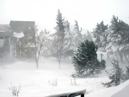 Istanbul_snow/3_campus_in_snow_130204